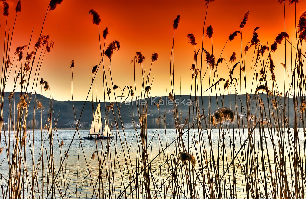 Sailng at Kastoria Lake (Makedonia, Greece) by Tania Koleska