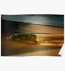 Moonstone Beach Rock at Sunrise Poster