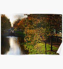 Grand Canal in autumn, Dublin, Ireland Poster