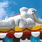Elephant Train by © CK Caldwell IPA