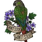 Can't Stop; Won't Stop (green-cheeked conure) by kiriska