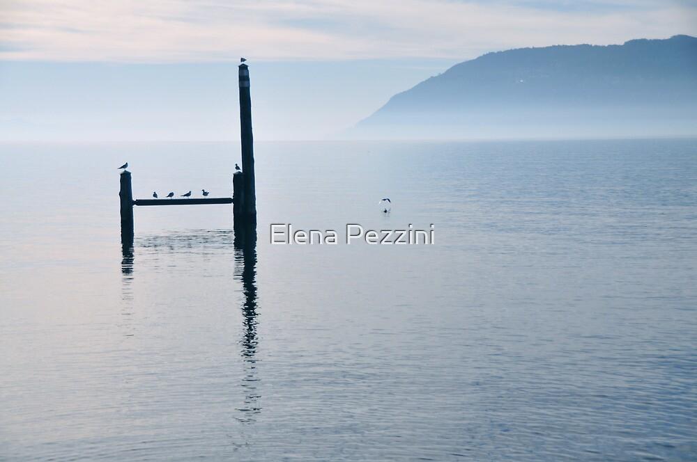 Perfection by Elena Pezzini