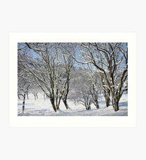 Cwm in snow Art Print