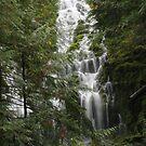 Waterfalling by Sarah Trent