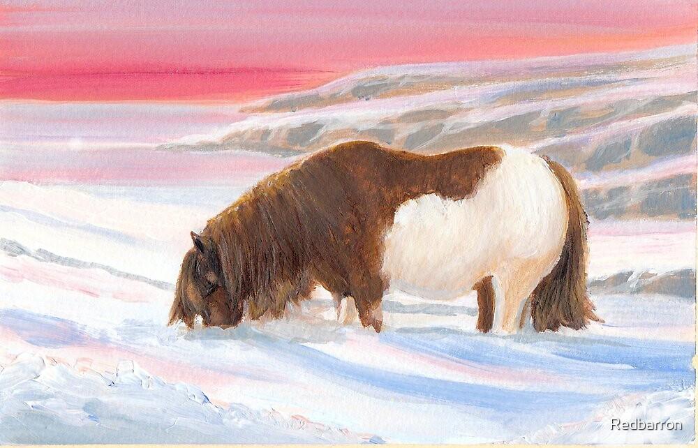 Shetland Winter by Redbarron
