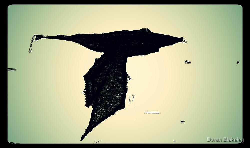 Jet Hawk by Duran Blakeley