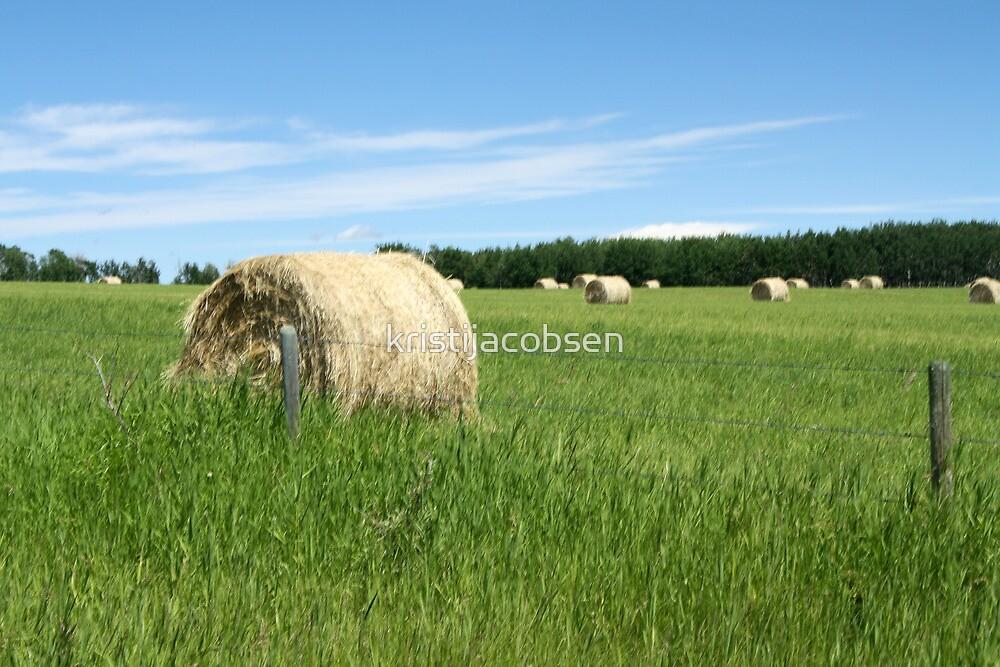 Prairie Produce by kristijacobsen