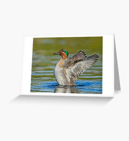 Wing flapping teal Greeting Card
