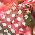 Hidden Pink by Kenneth Haley