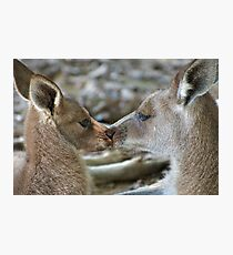 A kiss for Mum Photographic Print