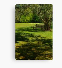 Sunny Day Under the Willow Canvas Print
