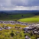 Crummackdale - The Yorkshire Dales by Dave Lawrance