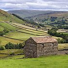 Swaledale Panorama - The Yorkshire Dales by Dave Lawrance