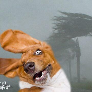 Knuckles vs. Hurricane Irene by eelsblueEllen