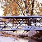 Bridge Over Icy Waters by Bo Insogna