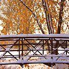 Snowy Autumn Bridge by Bo Insogna
