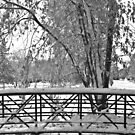 Snowy Walking Bridge in Black and White by Bo Insogna