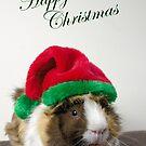 Scruffy Christmas by JEZ22