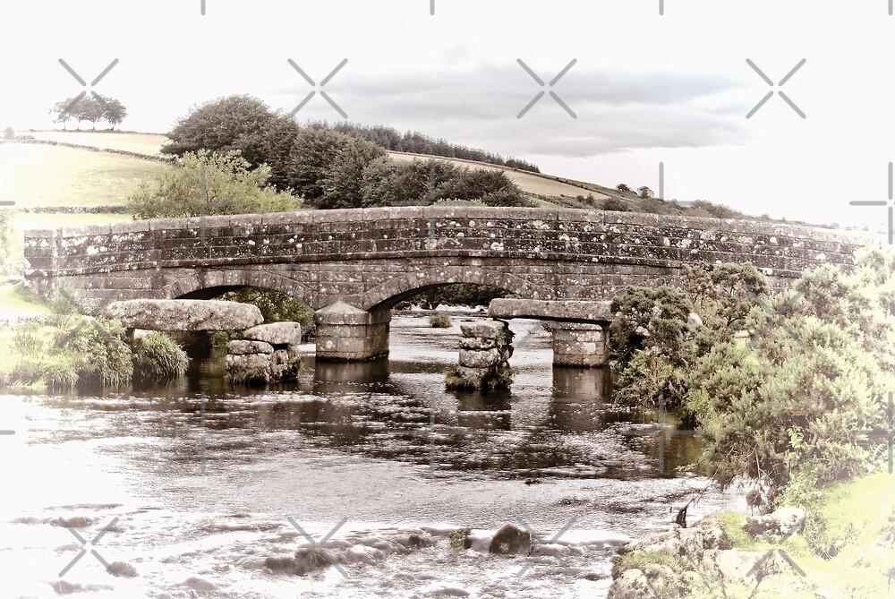 Bellever Bridge  by Catherine Hamilton-Veal  ©