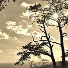 Sunset Sunburst over the Sauratown Mountains by Kelly Nowak