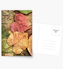 Redbud Leaves Postcards