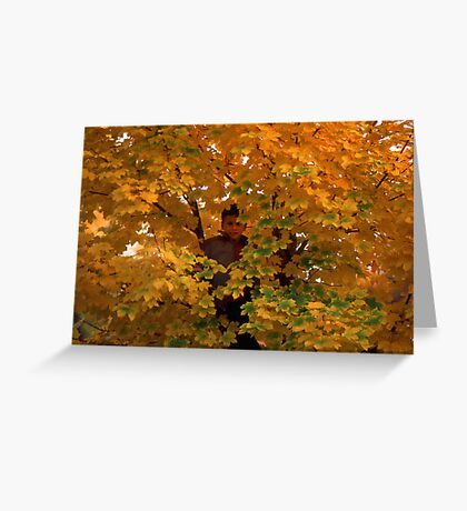 Boy in Tree Greeting Card