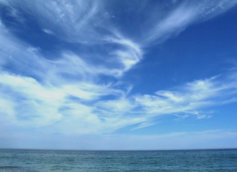 Wispy Clouds by Marcia Plante
