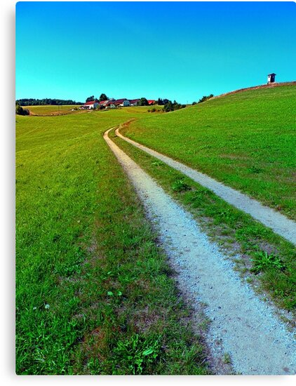 Lonely trail along the border by Patrick Jobst