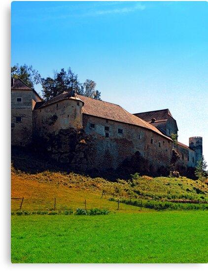 Waldenfels castle VII by Patrick Jobst