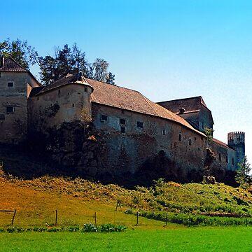 Waldenfels castle VII by patrickjobst