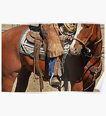Cowboy in Montana by Donna Ridgway Poster