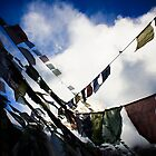 prayers on the wind  by Alila Hofmeyr