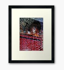 Macro Web Framed Print