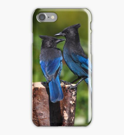 Jay Peck iPhone Case iPhone Case/Skin