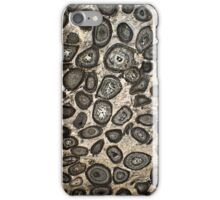 Fossil Rock iPhone Cover iPhone Case/Skin