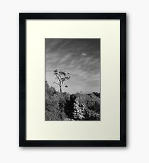 Things of Stone and Wood ~ Carved by Nature ~ Framed Print