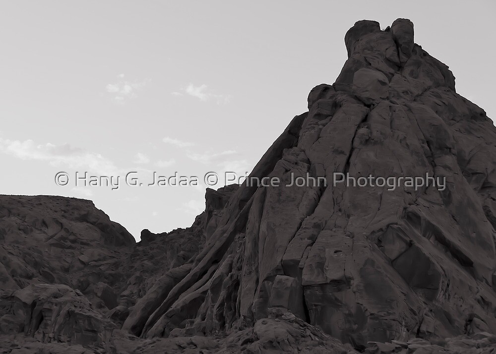 In Memory Of Smokin' Joe - January 12, 1944 to November 7, 2011 by © Hany G. Jadaa © Prince John Photography