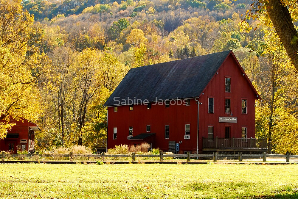 Foliage in Kent ~ Connecticut, USA by Sabine Jacobs