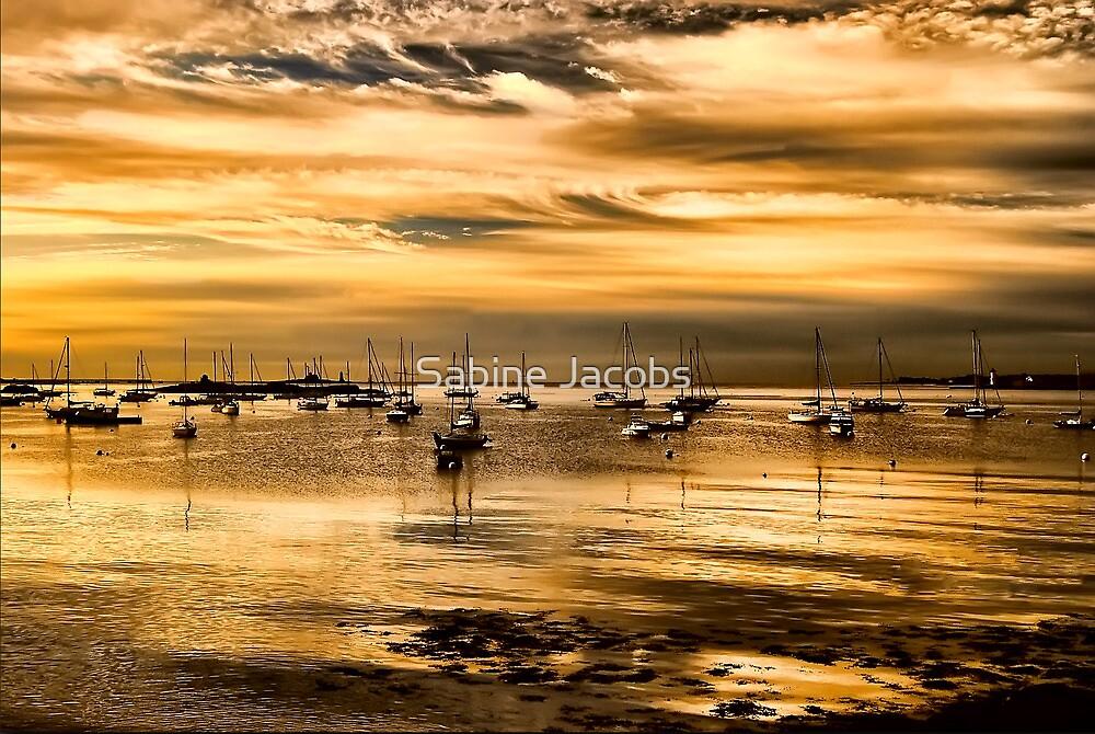 Pepperidge Cove ~ Maine, USA by Sabine Jacobs
