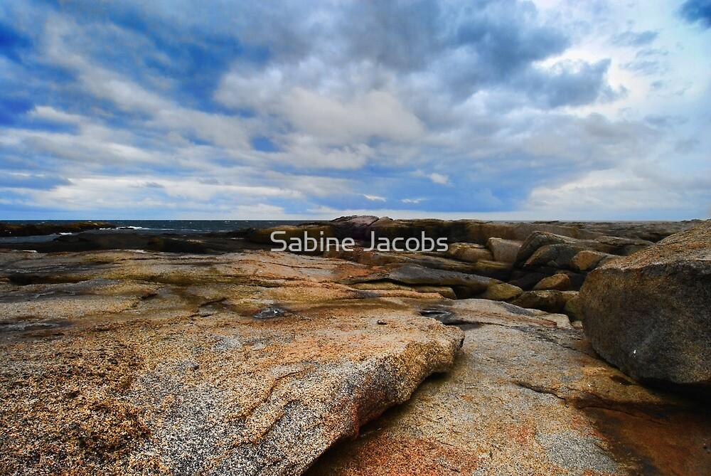 Coastline ~ Maine, USA by Sabine Jacobs