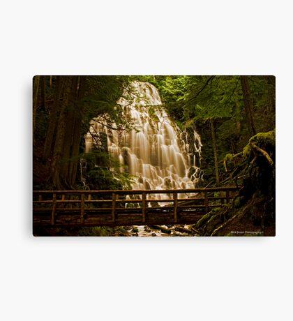 Ramona Falls 2 Canvas Print
