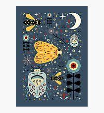 Midnight Bugs Photographic Print