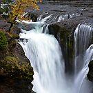 Lower Lewis River Falls by Kathy Yates