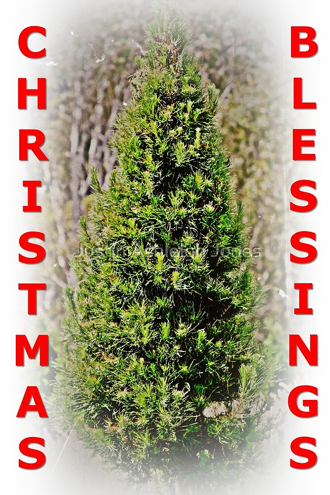 Card - Christmas Blessings (Ballarat C/mas Tree) by Justin Ashleigh Jones