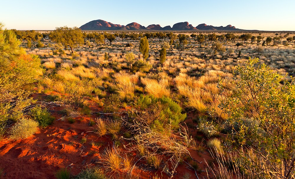The Olgas Sunrise by Russell Charters