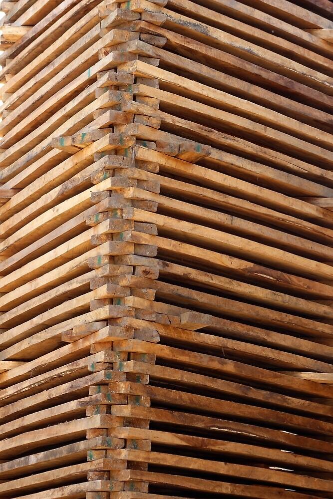 Drying Lumber by rhamm