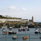 Boat Harbour in Cornwall by Susan Moss