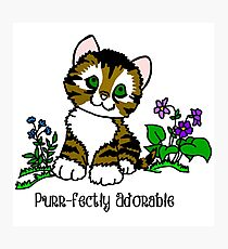 Purr-fectly Adorable Kitten Photographic Print