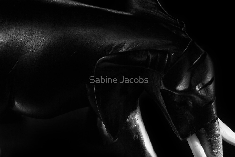 Black Elephant by Sabine Jacobs