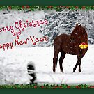 Happy Holidays by Grinch/R. Pross